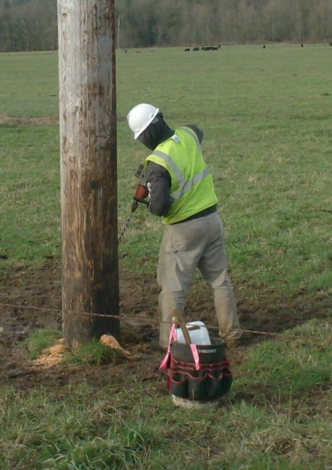 Mi-Tech employee conducting the District's Pole Test and Treat Program