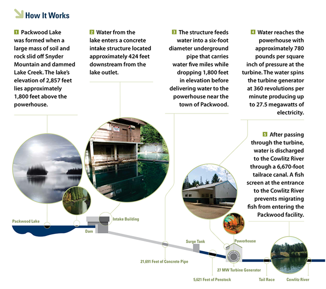 Infographic for how the Packwood Hydro works